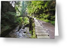 Ithaca Gorge Greeting Card