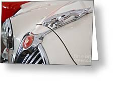 Jaguar Emblem Greeting Card