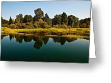 Johnson Creek Greeting Card