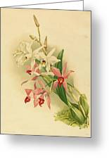 Joseph Mansell After Henry George Moon British Greeting Card