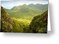 Jungle Landscape Greeting Card
