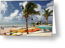 Kayaks On The Beach Greeting Card