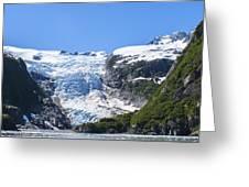 Kenai Fjords Greeting Card