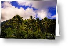 Koolau Mountains Greeting Card