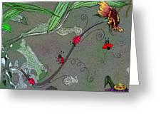 Ladybug Slide Greeting Card