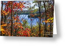 Lake And Fall Forest Greeting Card