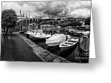 Lake Maggiore Bw Greeting Card