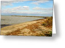 Lake Ontario Shoreline Greeting Card
