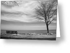 Lake Tree And Park Bench Greeting Card