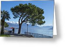 Lakeside With Trees Greeting Card