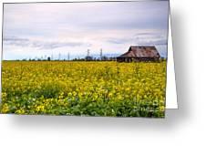Landscape 22 P Sac Ca Greeting Card
