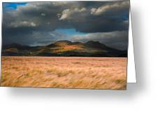 Landscape Of Windy Wheat Field In Front Of Mountain Range With D Greeting Card