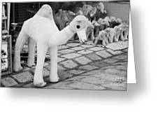 Large Soft Toy Stuffed Camel Souvenir At Market Stall In Nabeul Tunisia Greeting Card