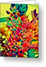 Leaves In Abstract Greeting Card