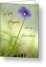 Life Began In A Garden Greeting Card