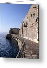 Light And Shadow In Hydra Island Greeting Card