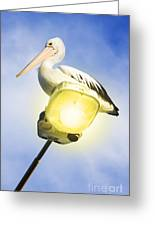 Light Pelican Greeting Card