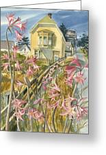 Lillies Of Mendocino Greeting Card
