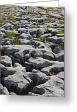 Limestone In The Burren Greeting Card