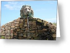 Lion Water Fountain. Greeting Card