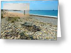 Lloyd's Bathing Beach At Sakonnet Point In Little Compton Ri Greeting Card