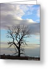 Lone Tree Greeting Card