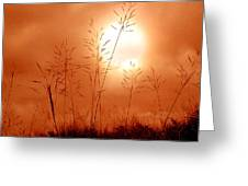 Lonely Planet Greeting Card by Nirdesha Munasinghe
