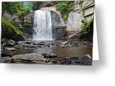 Looking Glass Falls North Carolina Greeting Card
