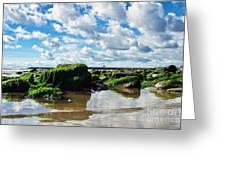 Low Tide At Lyme Regis Greeting Card