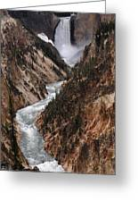 Lower Falls Of The Yellowstone Greeting Card