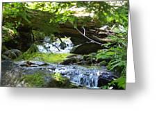Lower Granite Falls 1 Greeting Card