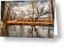 Lower Owens River Greeting Card