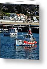 Lyme Regis Harbour Greeting Card
