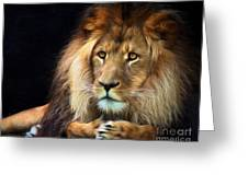 Magnificent Lion Greeting Card