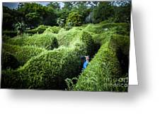 Man Lost Inside A Maze Or Labyrinth Greeting Card