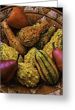 Many Colorful Gourds Greeting Card