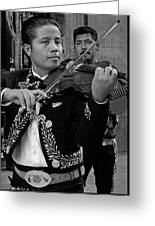 Mariachi-violin Greeting Card