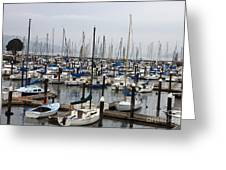 Marina San Francisco Greeting Card
