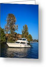 Maritimo 50 Greeting Card