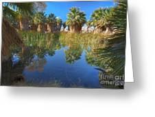 Mccallum Pond - Coachella Valley  Greeting Card