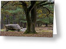 Megalithic Tombe Greeting Card by Frits Selier