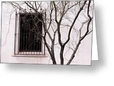 Mission Church Window Greeting Card
