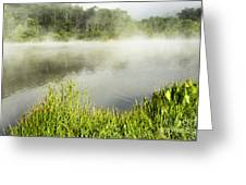Misty Summer Morning  Greeting Card