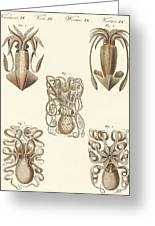 Molluscs Or Soft Worms Greeting Card