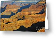 Morning Color And Shadow Play In Grand Canyon National Park Greeting Card