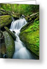 Mossy Rocks On Cascade Greeting Card