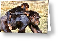 Mother Chimpanzee With Baby On Her Back Greeting Card