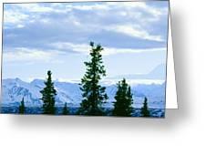 Mount Mckinley, Alaska Greeting Card