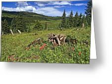Mountain Meadow  Greeting Card