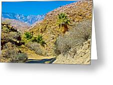 Mountain Peaks From Lower Palm Canyon Trail In Indian Canyons Near Palm Springs-california Greeting Card